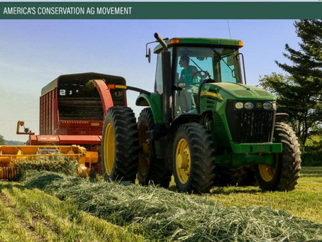 Using Cover Crops for Feed Production