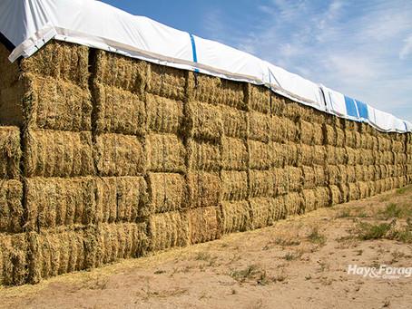 Nothing good happens during hay storage