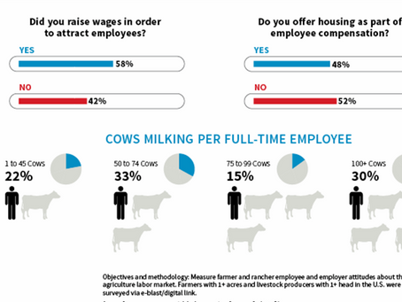 Farm Journal Study Finds Dairy Farmers Face Significant Labor Challenges