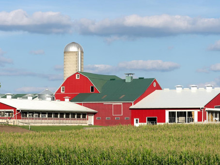 Rising costs pressuring dairy sector