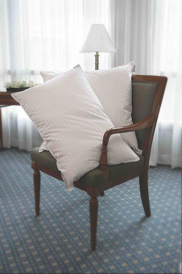 pillow on chair.jpg