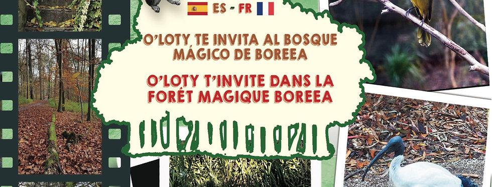 O'Loty t'invite dans la forêt magique Boreea - el bosque magico