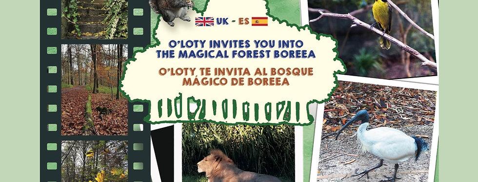 O'Loty invites you into the magical forest Boreea