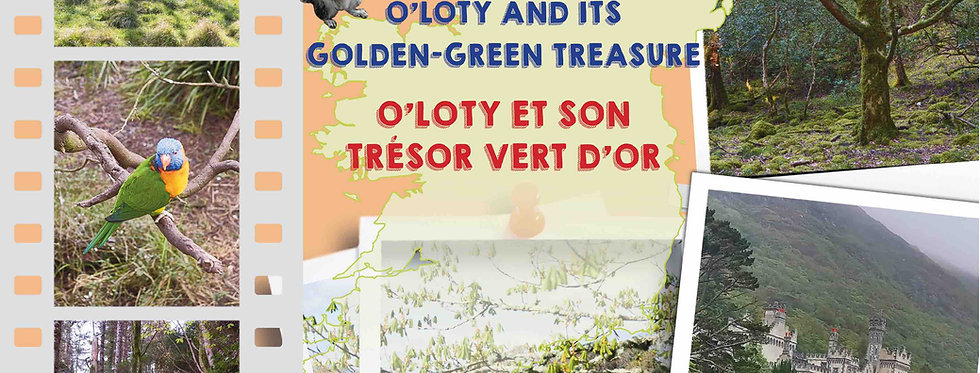 O'Loty et son trésor vert d'or O'Loty and its golden-green treasure