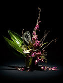 Momohara Tropical Arrangment 2.jpg