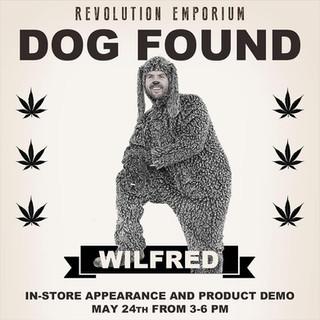 Revolution Emporium_Wilfred Advert 01.jp