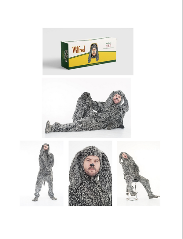 WilfredCBD Brand Guide p3.png