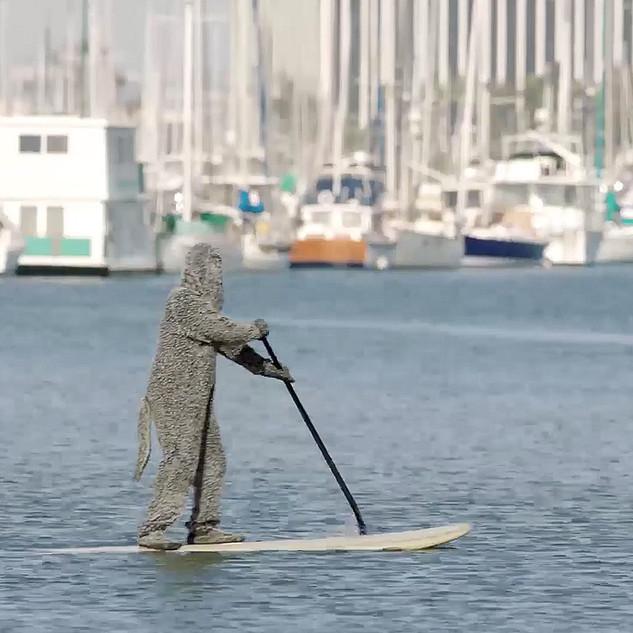 Wilfred_paddleboarding.jpg