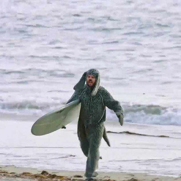 Wilfred_surfing.jpg