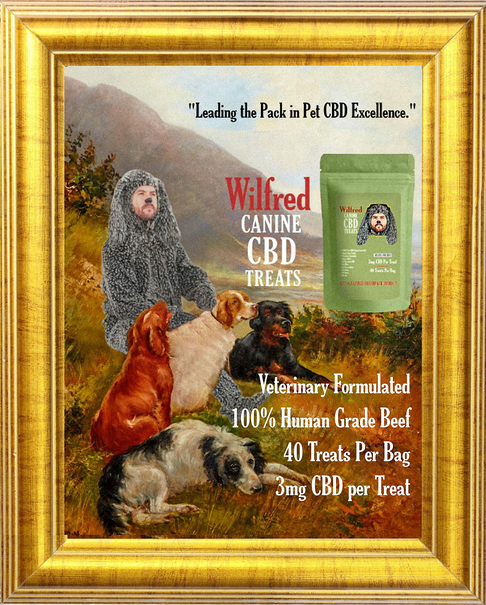 Narrow frame with wilfred and dogs final