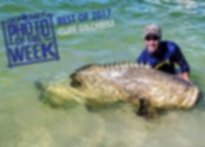 Goliath Grouper Fishing Charter