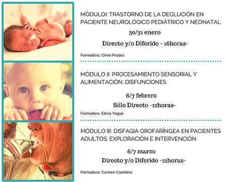 ESPECIALISTA ALIMENTACION II.jpg