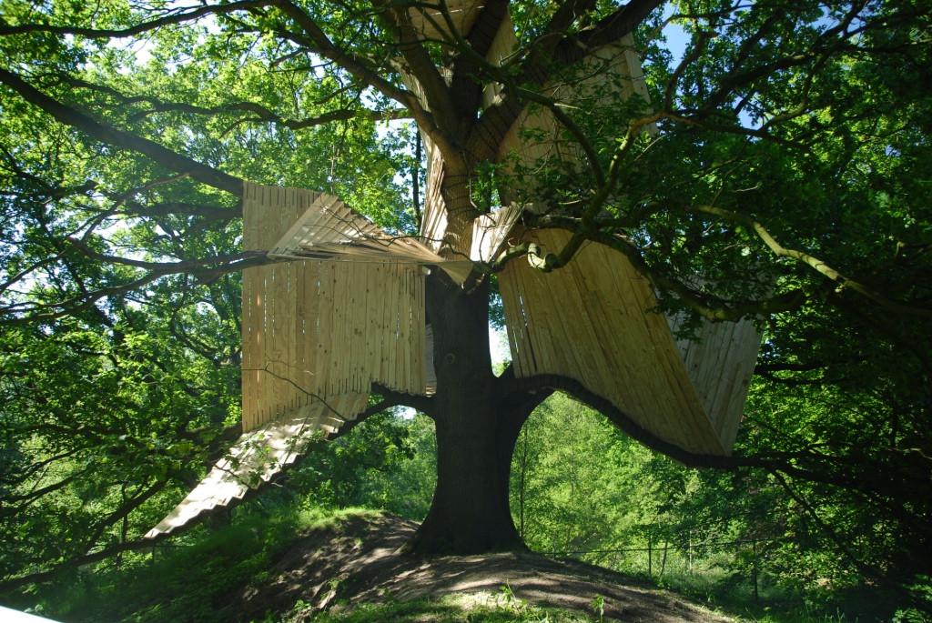 Lao Tse's Treehouse