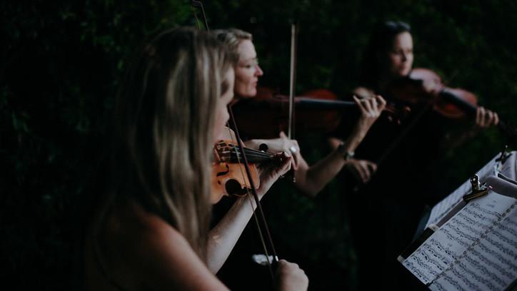 Resound String Quartet