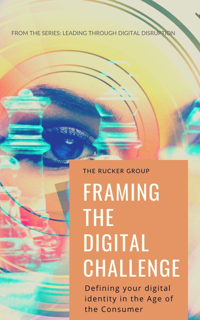Framing the Digital Challenge