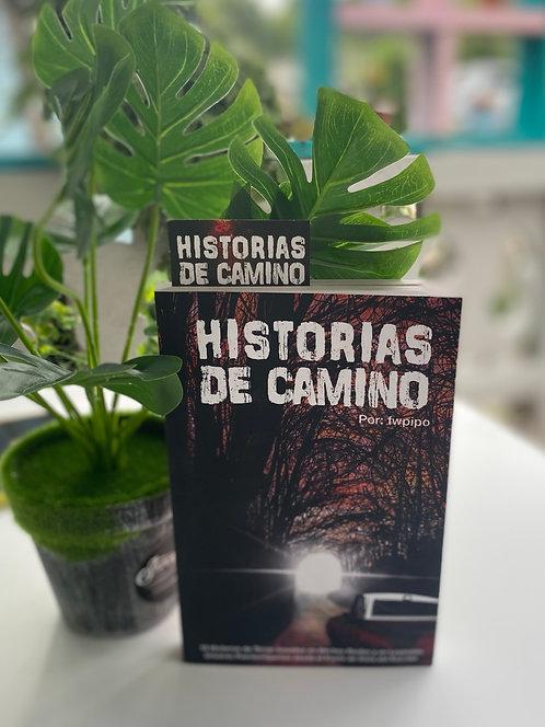 Historia de caminos