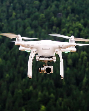 Drone above a forest