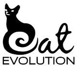 Cat evolution png.png