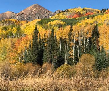 Colorado in the Fall