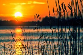 Improving Iowa's Impaired Waterbodies through Best Management Practices: Part 2