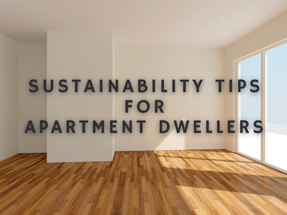 Sustainability Tips for Apartment Dwellers
