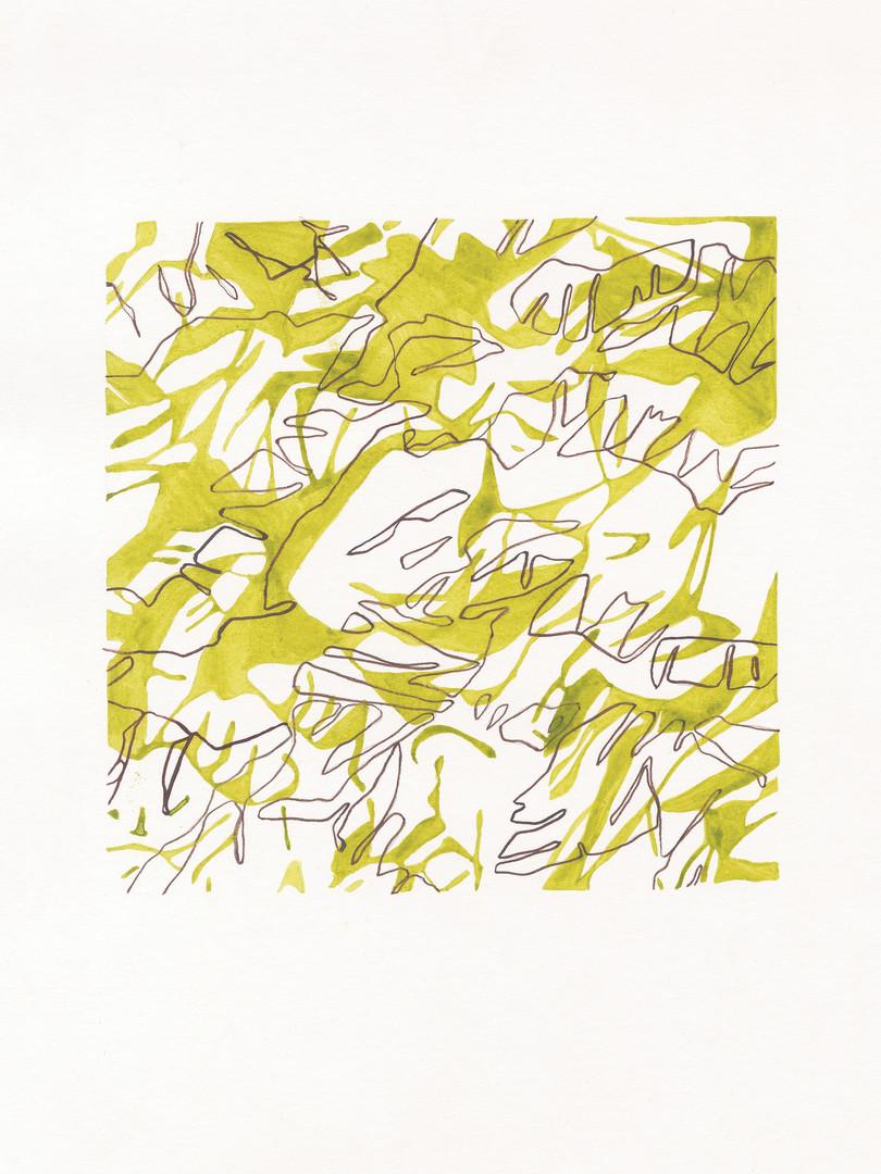 Green & brown lines (1).jpg