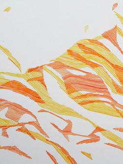 Little Canyon Watercolour Line 5.jpg