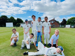 Townville V Under 9s Match Report