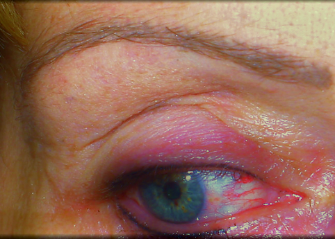 Nagelstudio Pink Permanent Makeup (5).pn