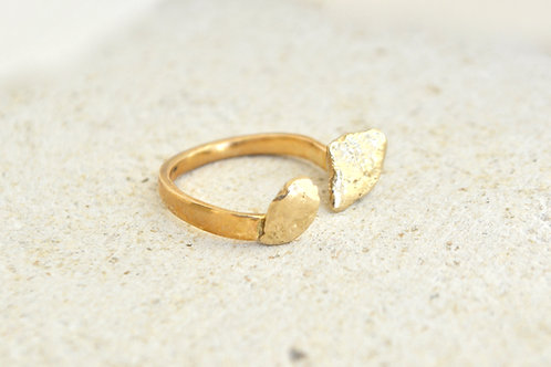 Twin fossil Ring