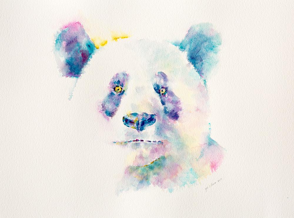Po Faced Panda by Gill O'Shea