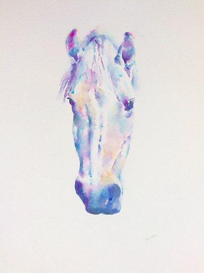"Boru 3 - Watercolour Painting (32""x26"")"