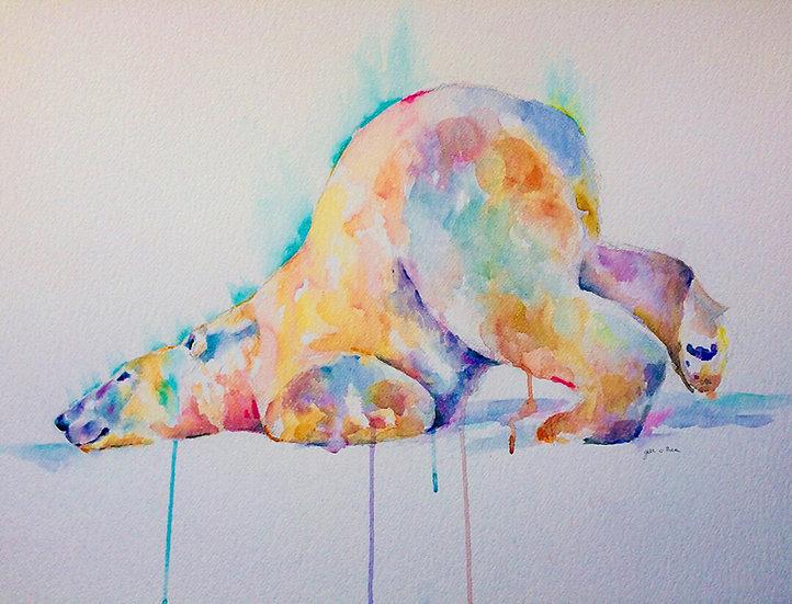 Polar Yoga 2