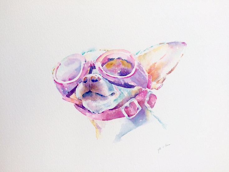 "Maverick - Original Watercolour Painting (34""x29"")"