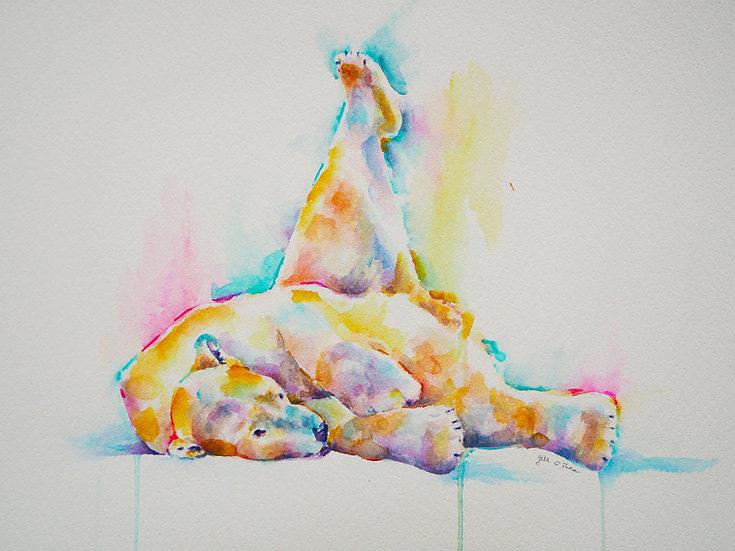 Polar Yoga 3
