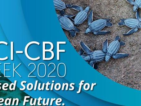 CCI-CBF Week Takes Caribbean Biodiversity Virtual