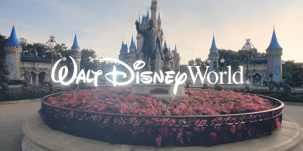 Mandalorian Artist Event at Disney World