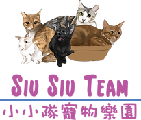 siusiu Team Logo.png