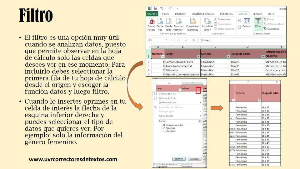 Aplicar filtro en Excel