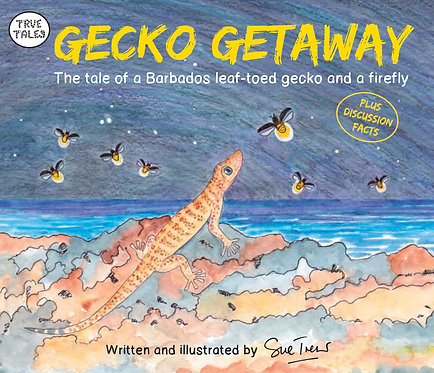 Gecko Getaway The tale of a Barbados leaf-toed gecko and a firefly
