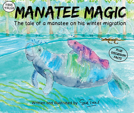 Manatee Magic  The tale of a manatee on his winter migration