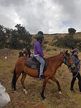 horse ridin therapy for hume trafficking