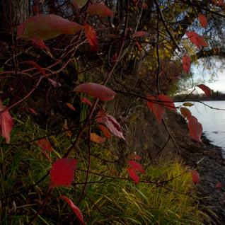 Fall On The Red River