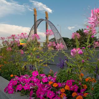 Flower Gardens in Winnipeg