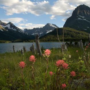 Glacier National Mounument