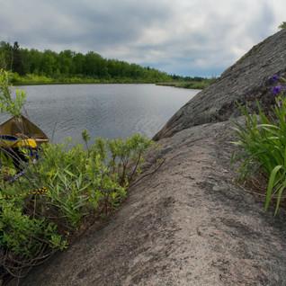 Betula Lake