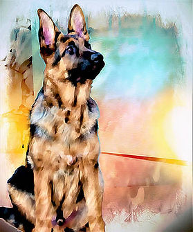 GSD drawing for website with color.jpg