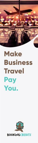 business-travel-pay-you-160x600b.jpg