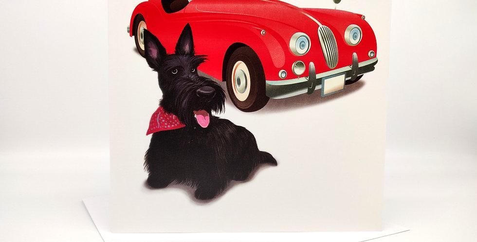 'Posh Scottie Dog' Greeting Card