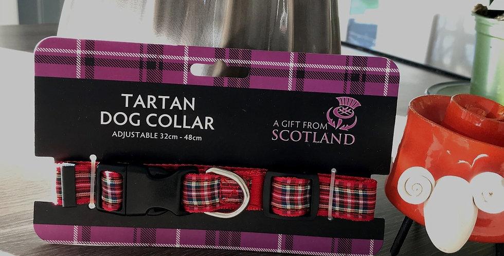 Tartan Dog Collar